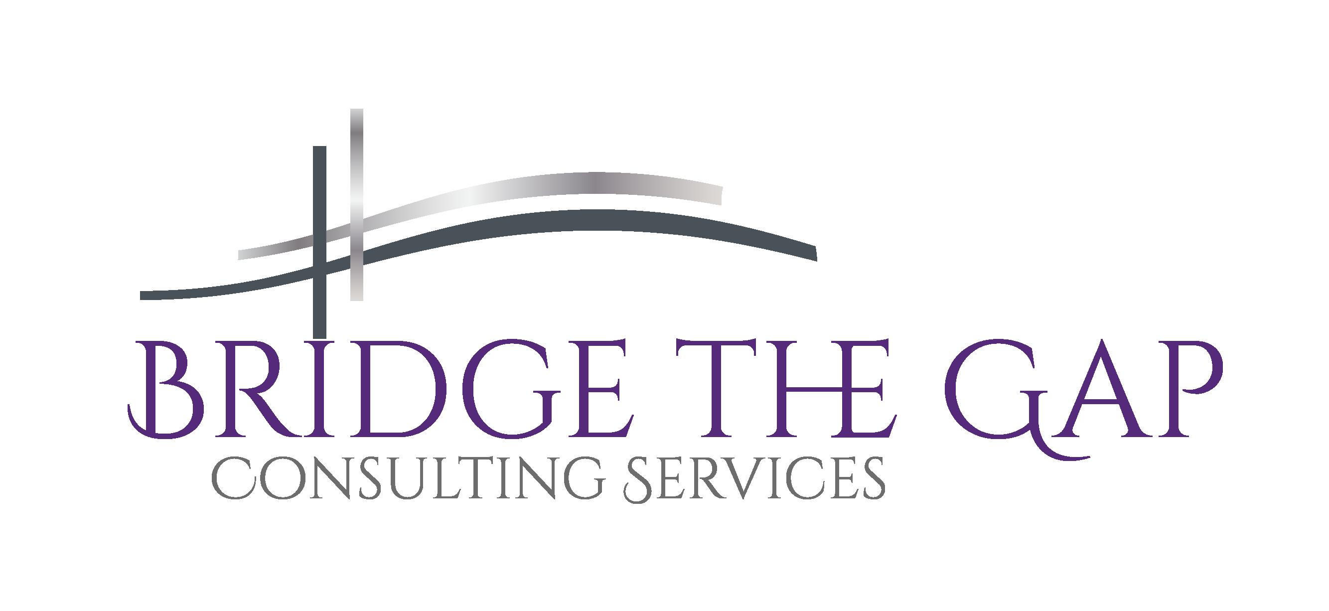 Bridge The Gap consulting services